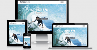 THE PICPLAZA DESIGN